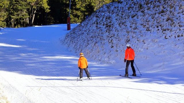 Skiers Ski Snow Winter Sports Skiing